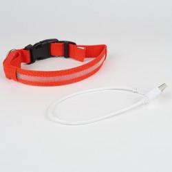 Collier Lumineux LED pour chien rechargeable