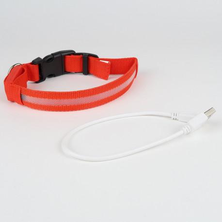 Collier Lumineux LED pour chien