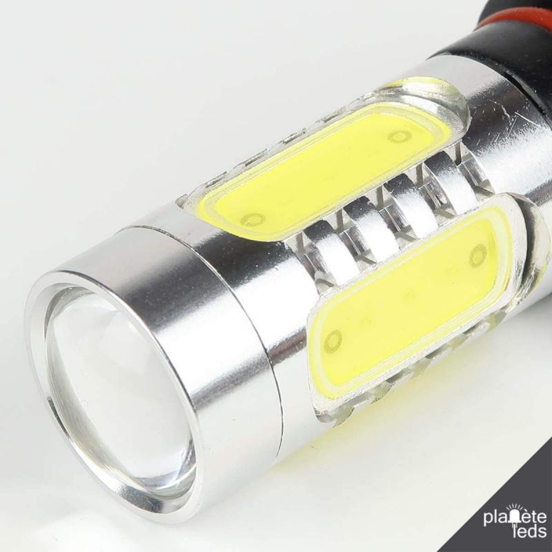ampoule led p13w blanche 10 25v. Black Bedroom Furniture Sets. Home Design Ideas