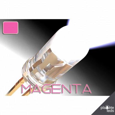 Led ColorPrecision 5mm MAGENTA