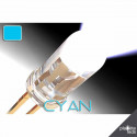 Led ColorPrecision 5mm CYAN