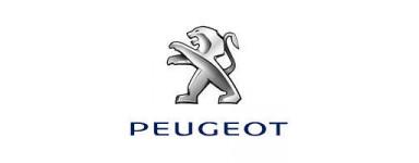 Led Peugeot